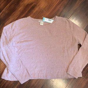 Blush Cotton emporium oversized sweater